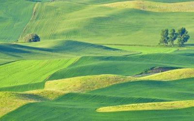 Climate change threatens global breadbaskets